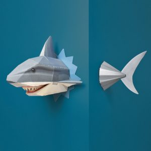 crée ton incroyable requin